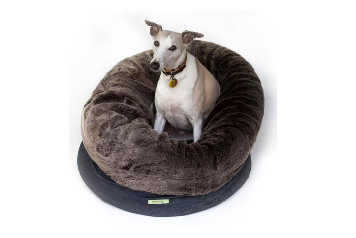 Cat And Dog Bedding Funky Pods Funky Cat